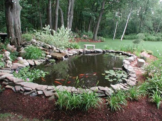 Best location for a garden pond for Small pond house plans