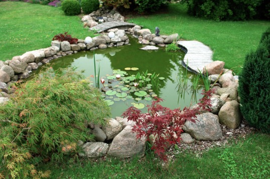 backyard-pond-with-walkway