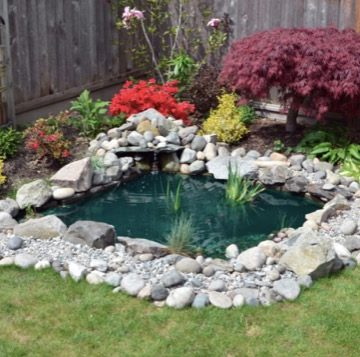 beautiful-backyard-garden-pond