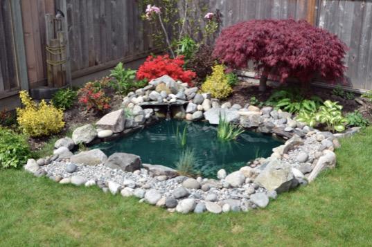 beautiful-backyard-garden-pond