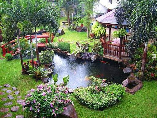 modern garden pond