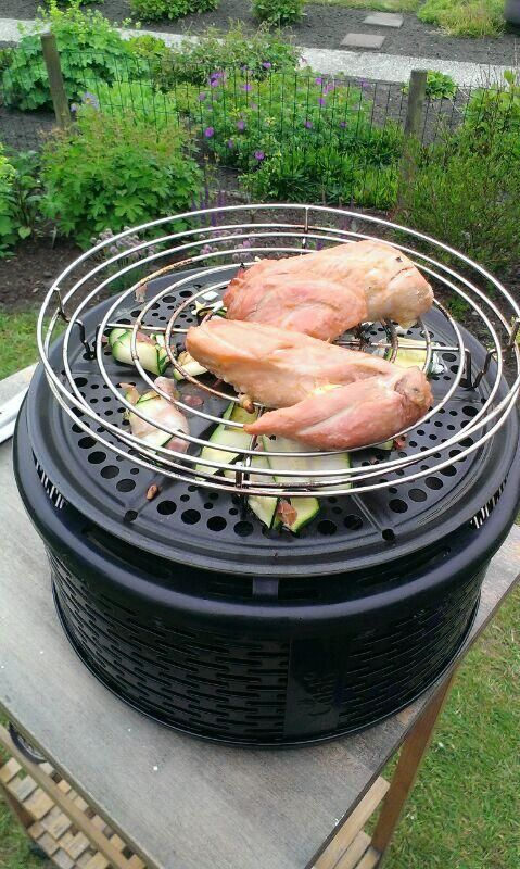 Super Our Review of the Cobb Premier Grill XM31