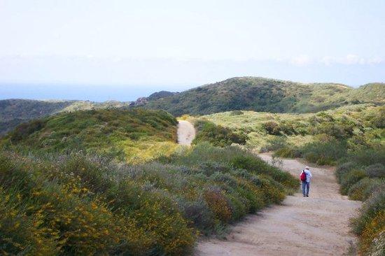 hiking-in-laguna-coast