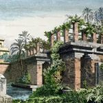 The History and Evolution of Gardens
