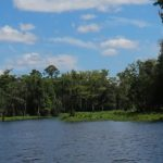 Florida Defenders of the Environment: Representing River Rights and Restoration Since 1969
