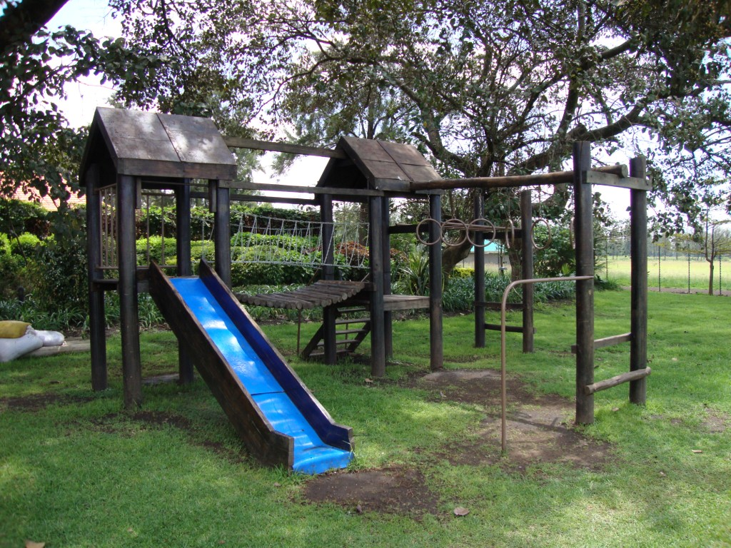 jungle-gym-design