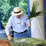 Florida Native Plant Society: Faithful Friends of Florida's Flora