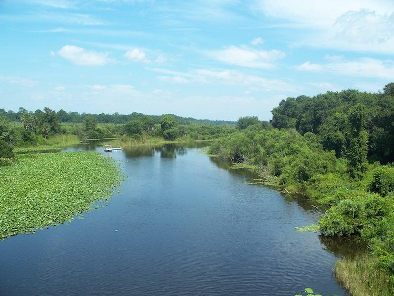 starkes ferry ocklawaha river