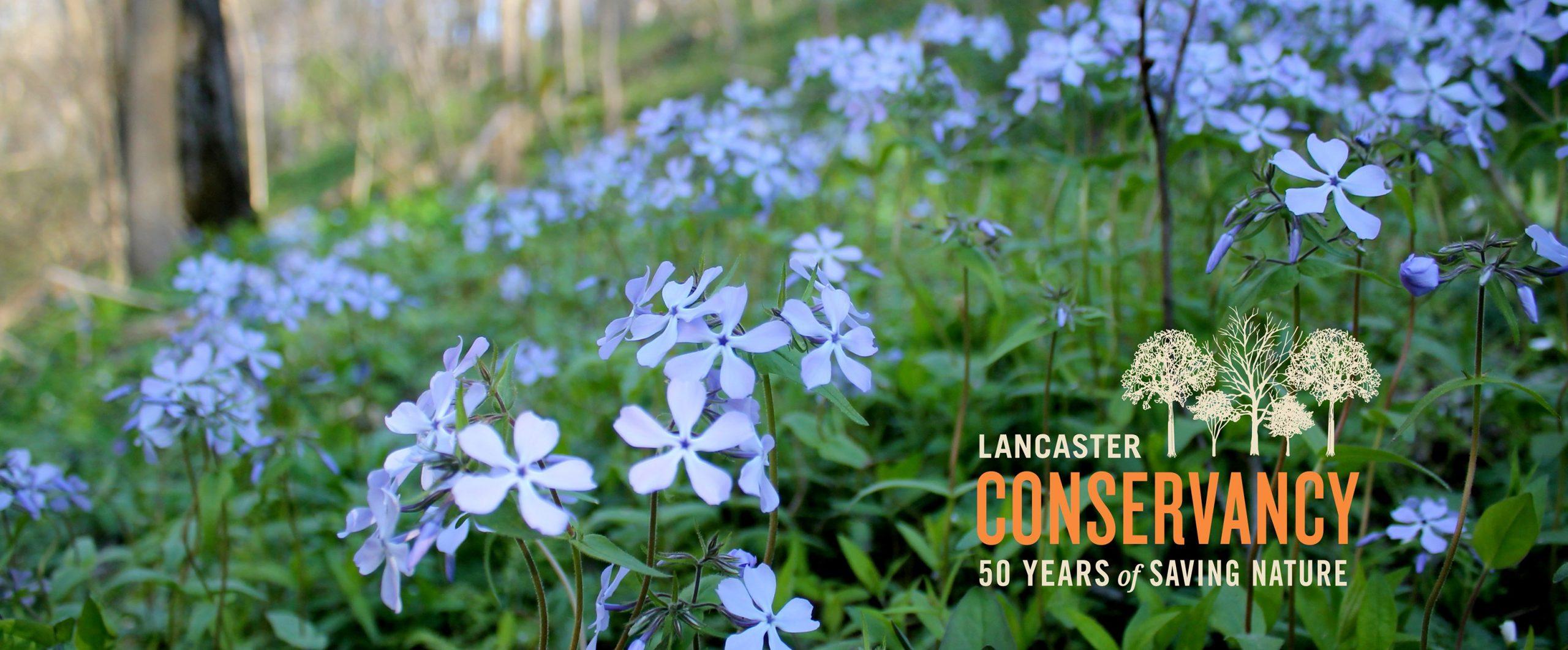 lancaster conservancy banner