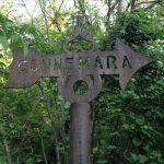 Connemara Conservancy: 37 Years of Natural Activism